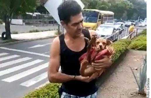 El hombre que reportó el accidente del perro, fue quien se quedó con él./ AGENCIA REFORMA