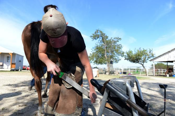 Farrier Madeline Miner files the hooves of a rescue horse at Becky's Hope Horse Rescue in Frisco.