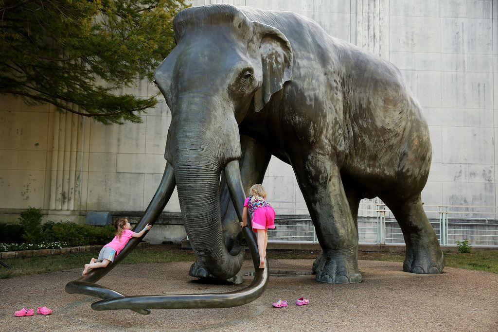 Children climb the tusks of an elephant statue outside the Dallas Museum of Natural History during the State Fair of Texas. Gerry Mandel, a lifelong Dallasite who grew up exploring the museum, asked Curious Texas whether it's still open to the public.