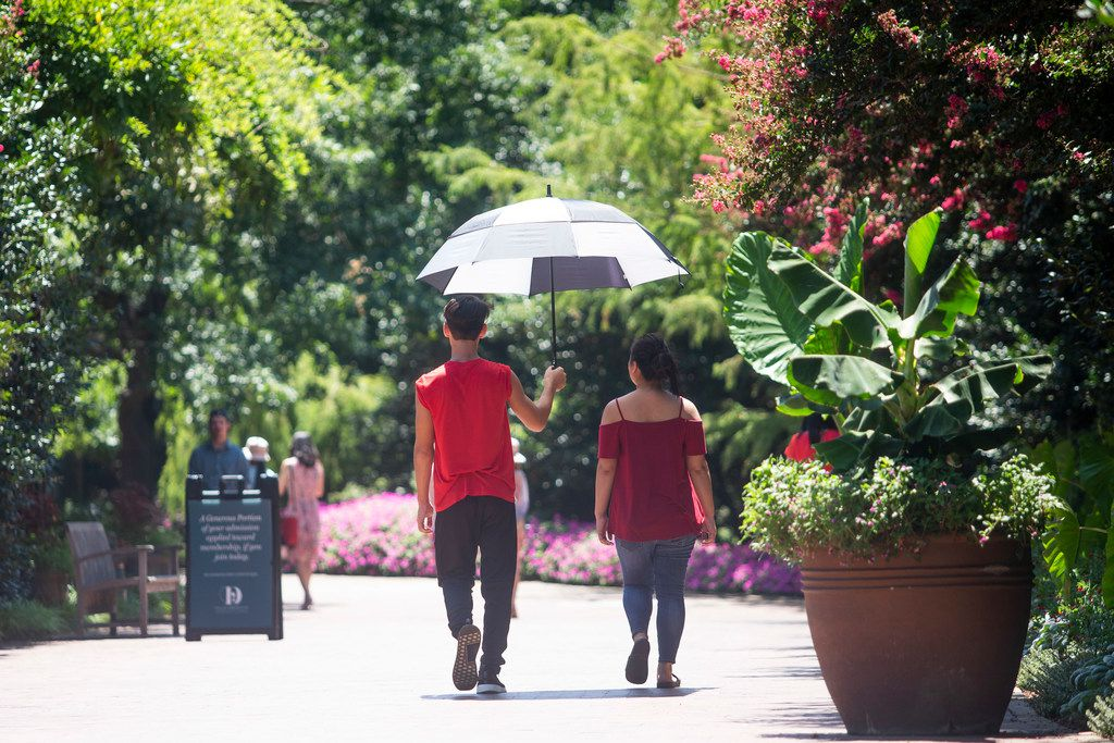 The Dallas Arboretum is offering a bargain: Its August Dollar Days promotion features discounted admission and parking as well as food and drink deals.