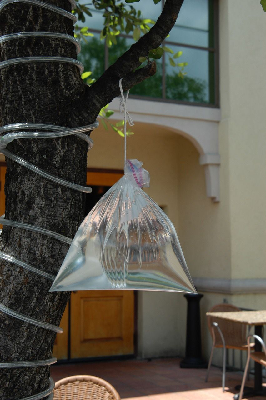 Hanging bags of water work surprisingly well to repel annoying flies. The rounder and plumper the bags, the better.