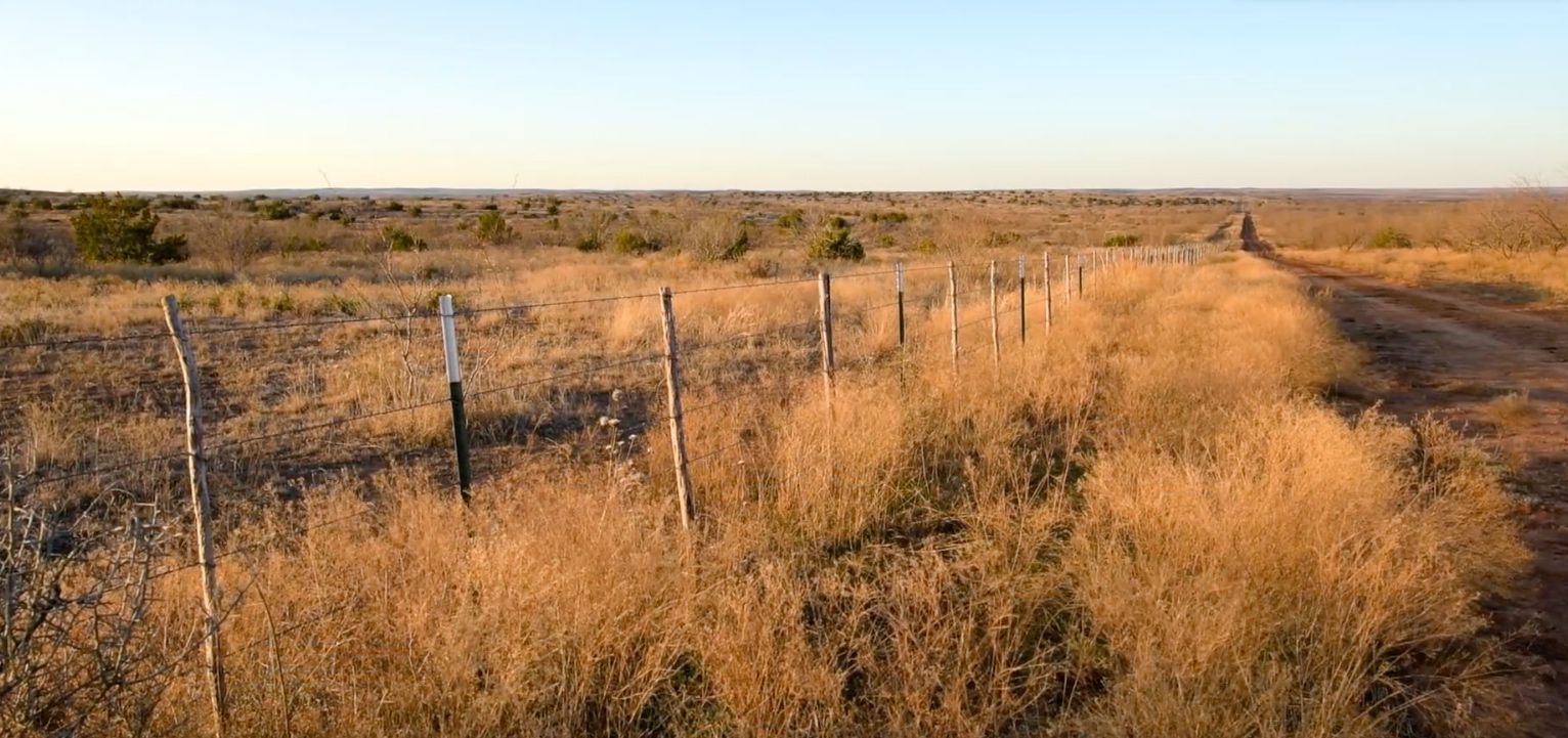The ranch is used for hunting and running cattle.