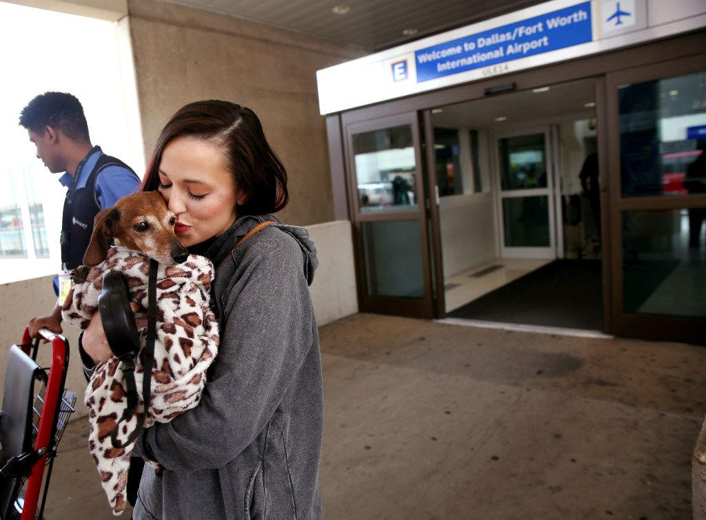 Donna Rosen kisses her dog Bobo while waiting for an Uber outside DFW International Airport. Bobo was missing for over a year before Rosen was able to track him down in Oregon.