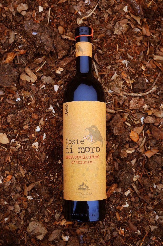 2013 Coste di moro Montepulciano d'Abruzzo from Lunaria winery