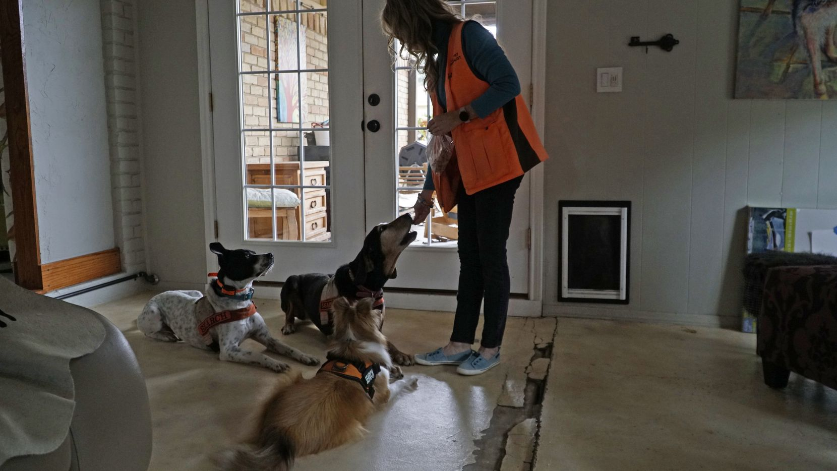 Bonnie McCririe-Hale with her dogs Idabel, a black & tan coon hound, Buck, a pointer pit bull mix, and Kaio, a shetland sheep dog, at her home in Grapevine, Texas.
