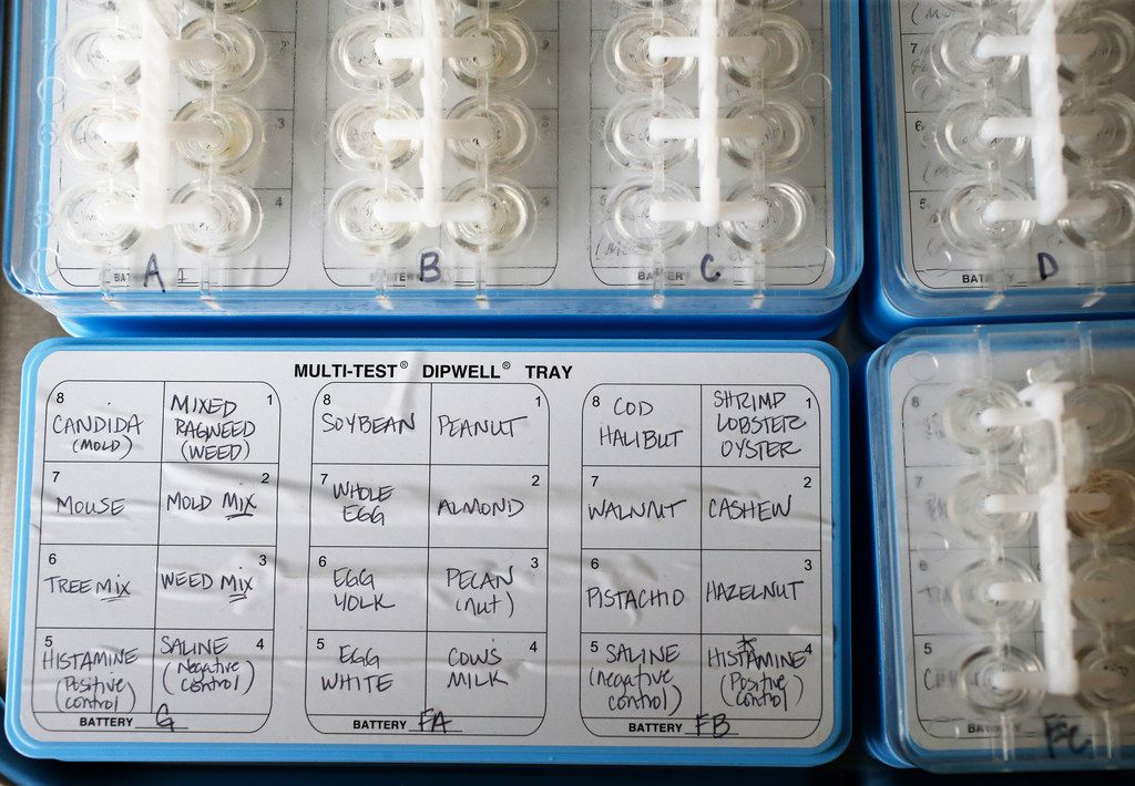 Tree and plant pollens (left row) are part of an allergy test kit shown at the office of Dr. Eric R. Kavosh, a Plano allergist-immunologist.