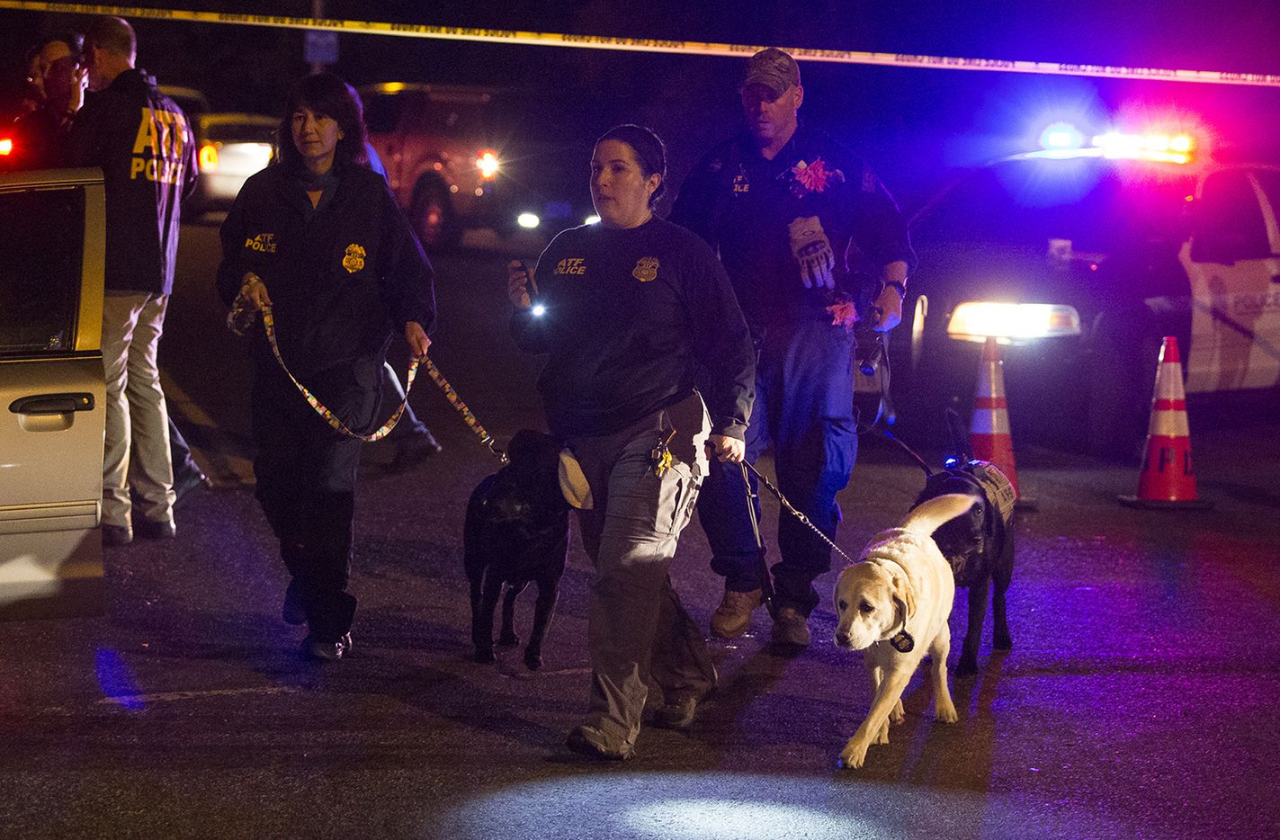 Police dogs and their handlers deploy at the scene of an explosion in southwest Austin.