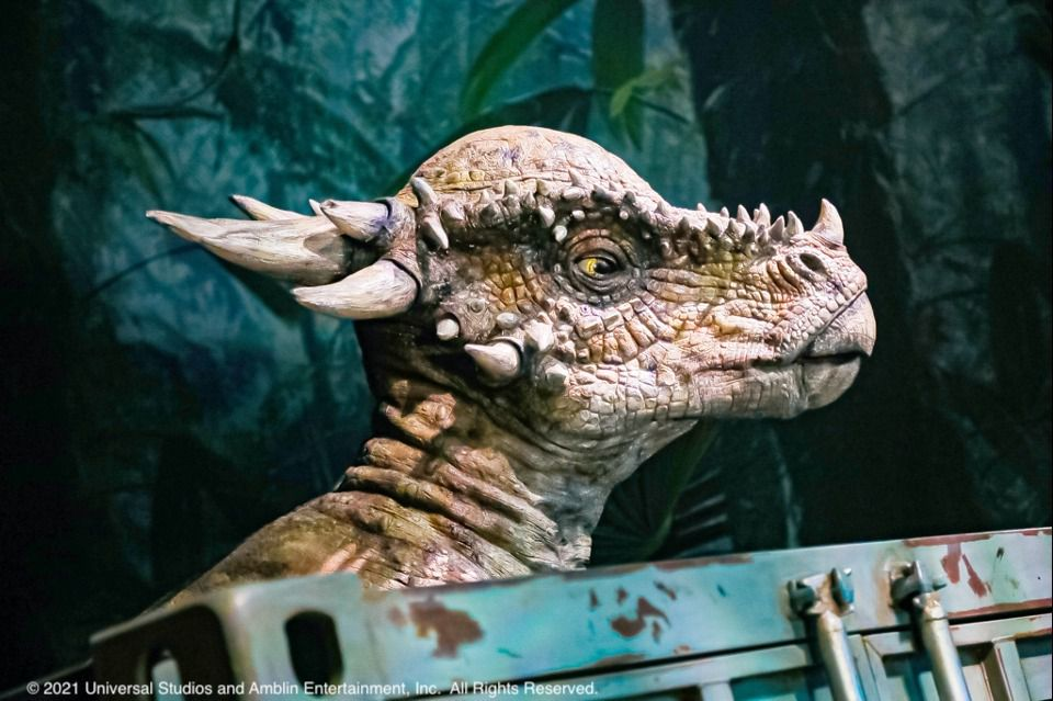 """The """"Jurassic World: The Exhibition"""" tour runs from June 18 to Sept. 5 at Grandscape in The Colony.  Photo credit: Jurassic World: The Exhibition   2021 Universal Studios and Amblin Entertainment, Inc.  All Rights Reserved."""