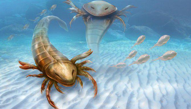 Un dibujo de la Universidad de Yale muestra cómo se hubiera visto el enorme escorpión marino conocido como Pentecopterus decorahensis. (AP/PATRICK J. KYNCH)