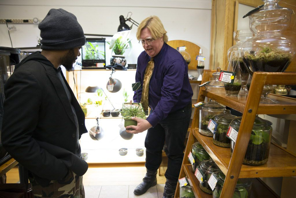 Paul Riddell of Triffid Ranch, right, shows a medusa head plant to Gabriela Lyrix (CQ), left, in at the Gallery at Midtown and Artist Studios in Valley View Center in Dallas, Texas, Saturday, January 16, 2016. (Allison Slomowitz/ Special Contributor)