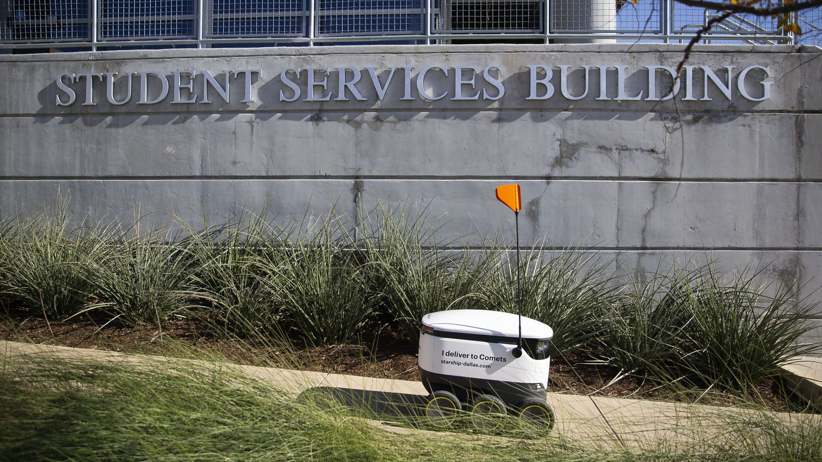 A Starship Technologies robot fulfills a delivery on the UT Dallas campus on Dec. 12, 2019 in Richardson. Students at UT Dallas can get their food by robot using the Starship app. (Juan Figueroa/The Dallas Morning News)