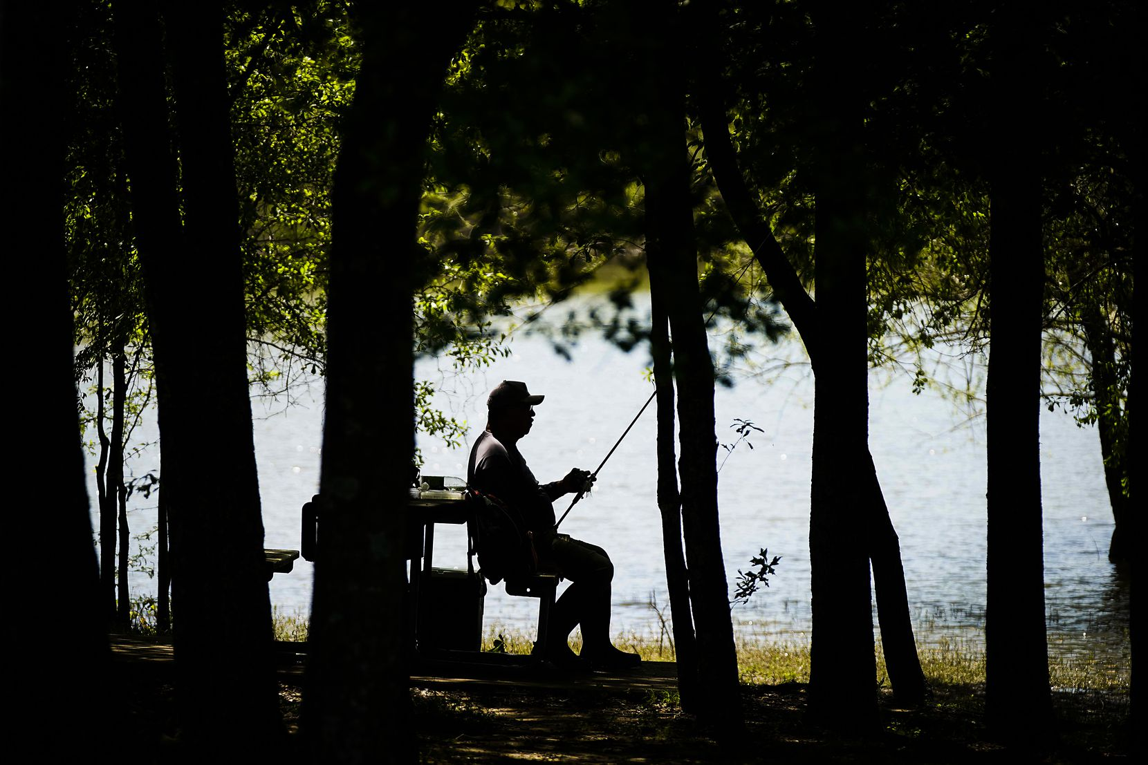 """Rudy Sanchez of Dallas sat in the shade to work on his gear while fishing at Lake Tawakoni State Park on April 7, 2020, in Wills Point. State parks temporarily closed due to the COVID-19 pandemic. Sanchez, who fishes at the park a few times a week, said he was ready to pack up and head home from the day when he got a text message announcing the closures, but he said, """"I'm staying!"""" Sanchez said he wasn't sure where he would fish starting the next day. """"That's the only place I go, to state parks,"""" he said. """"I may have to just go to Galveston or something."""""""