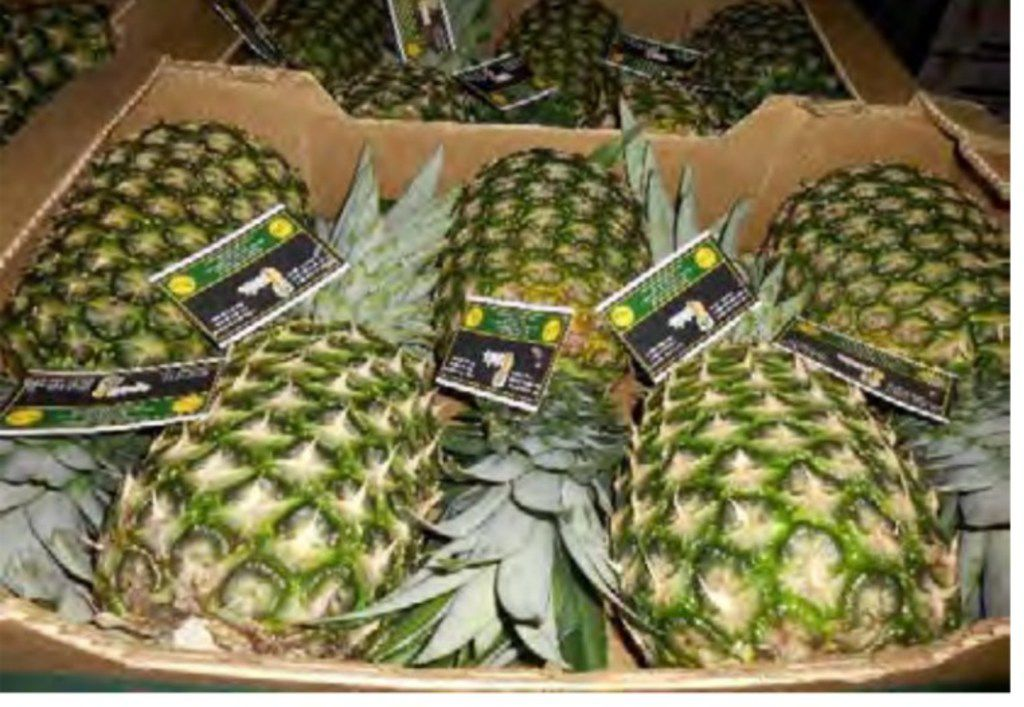 """""""five count"""" pineapples"""