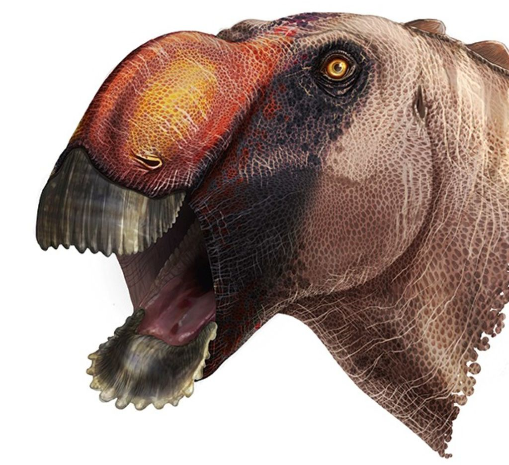 An artist's depiction shows what the Aquilarhinus palimentus might have looked like. Researchers recently identified the new species of dinosaur based on fossils found decades ago in Big Bend National Park.