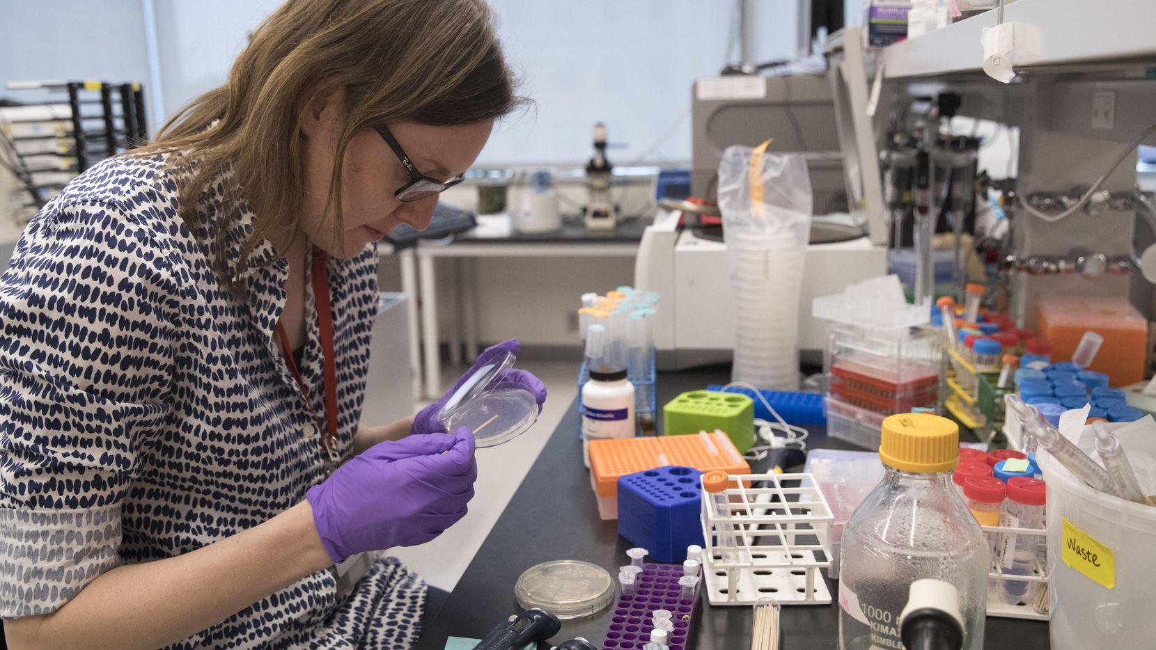La doctora Leslie Mitchell, trabaja en su banca en el laboratorio de Alexandria Center for Life Sciences en Nueva York. Foto AP
