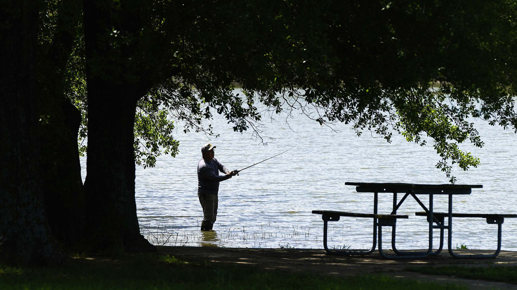 "Rudy Sanchez of Dallas casts a line while fishing at Lake Tawakoni State Park on Tuesday, April 7, 2020. State parks will temporarily close starting at close of business Tuesday, in the name of public safety due to the COVID-19 pandemic, Texas Parks and Wildlife officials announced. Sanchez, who fishes at the park a few times a week, said he was ready to pack up and head home from the day when he got a text message announcing the closures, he said, ""I'm staying!"" and planned to fish for a few more hours."
