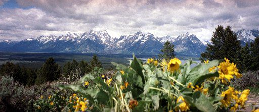The Grand Tetons,which are part of the Rocky Mountains, as seen from the top of Signal Mountain.