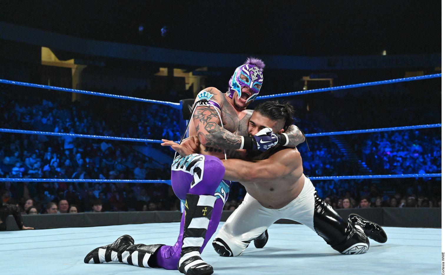 Rey Mysterio ha ostentado los títulos Intercontinental, Crucero, de Estados Unidos, de Parejas y de la WWE durante su carrera, además de ganar el Royal Rumble en 2006.