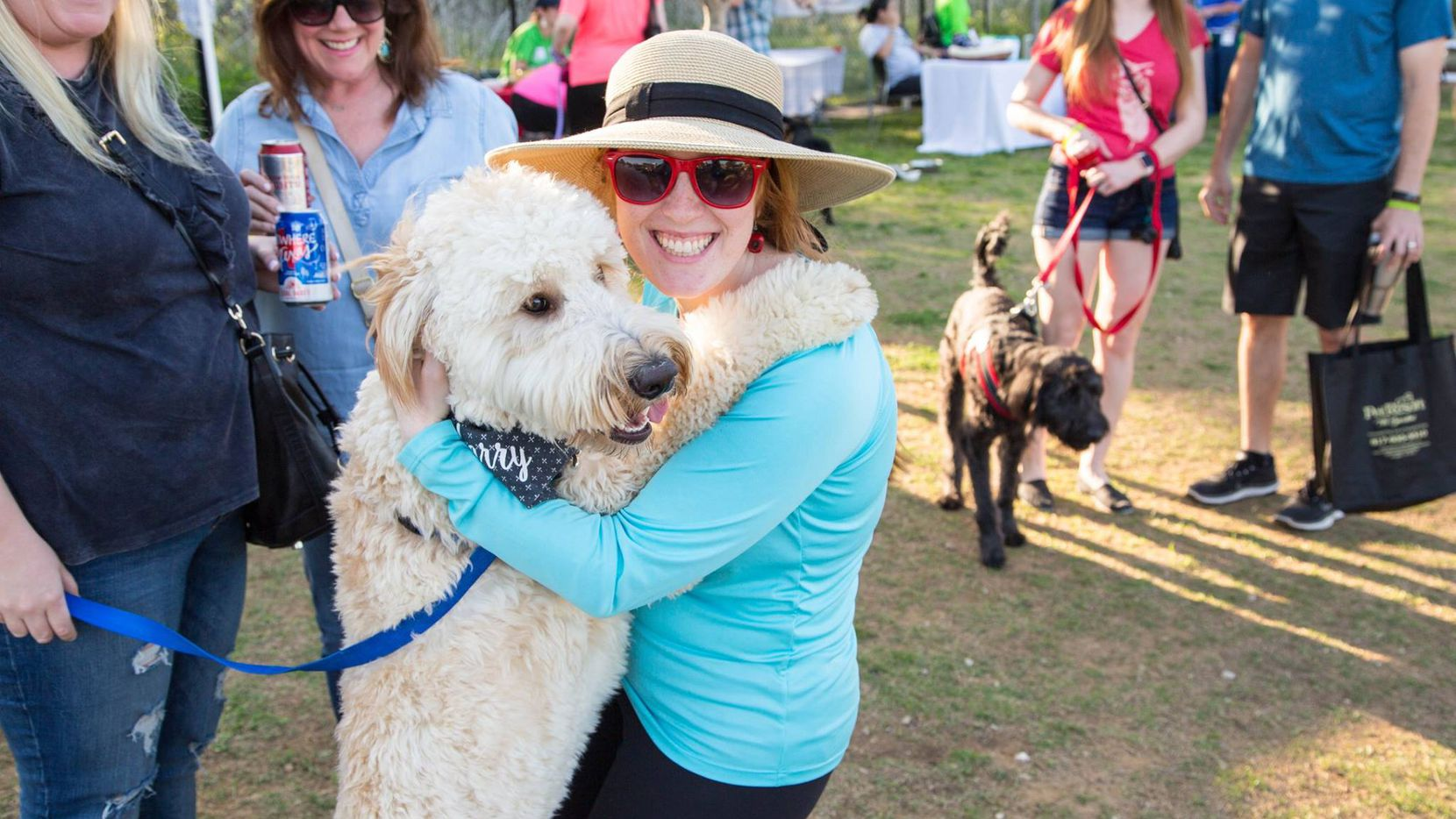 Dog About Town Parties In The Park And More Things To Do