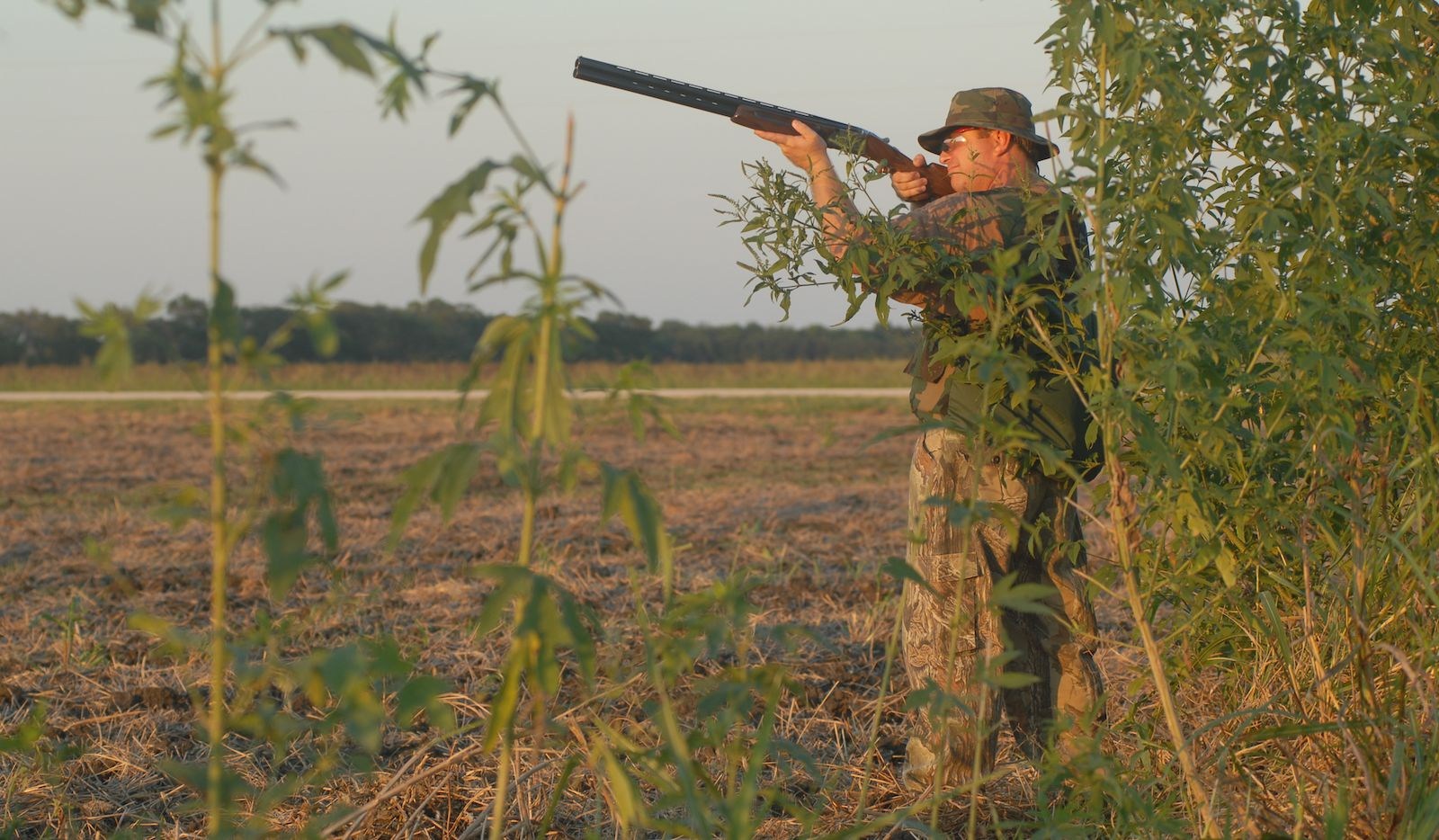 Dove season gets under way at 30 minutes before sunrise on Sept. 1 in most of Texas. Nearly 273,000 hunters went afield last year and killed nearly 6 million doves, including about 3.8 million mourning doves.