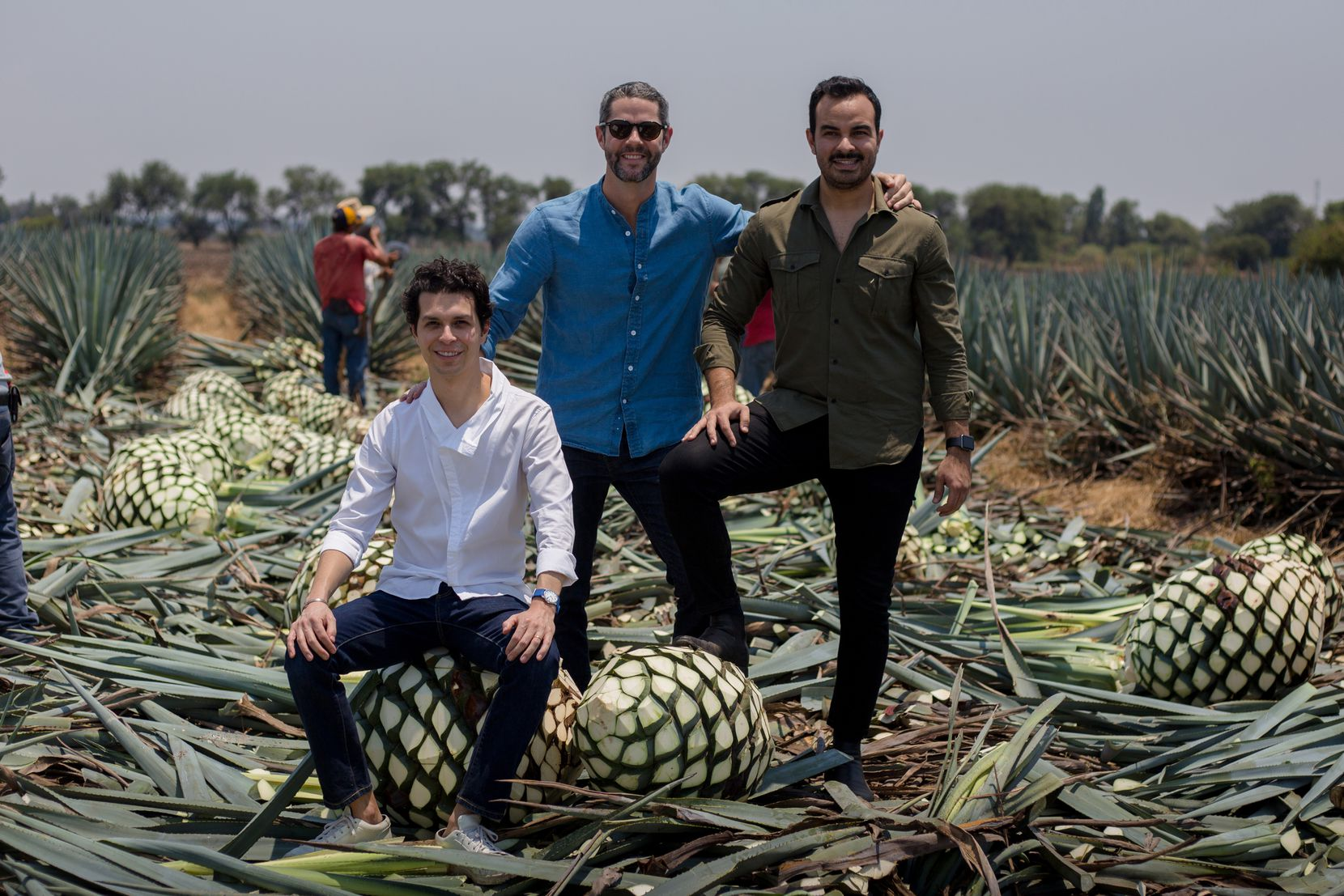 """From left to right: David Carballido, Jim McDermott and David """"Lalo"""" González stand in an agave field in the Jaliscan Highlands."""