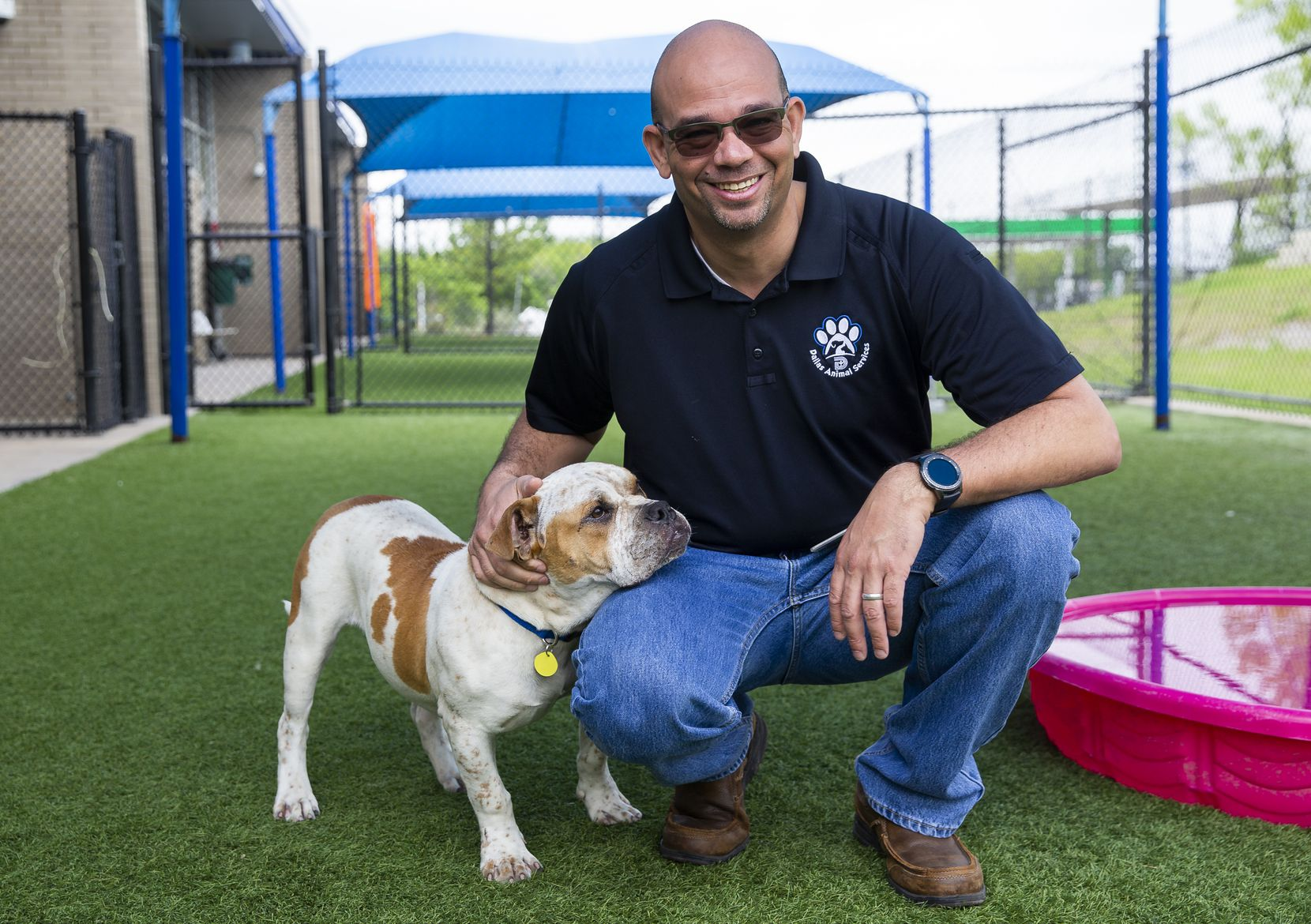 "Dallas Animal Services Director Ed Jamison, with Tank (A1099286) at Dallas Animal Services. So far, all is well inside the shelter, ""But we've got to adapt,"" Jamison said. ""No one plan will carry us through to the end of this.""  on April 2, 2020 in Dallas. The shelter is relying on fosters and online adoptions as potential adopters aren't allowed into the building as a result of the coronavirus pandemic. (Juan Figueroa/ The Dallas Morning News)"