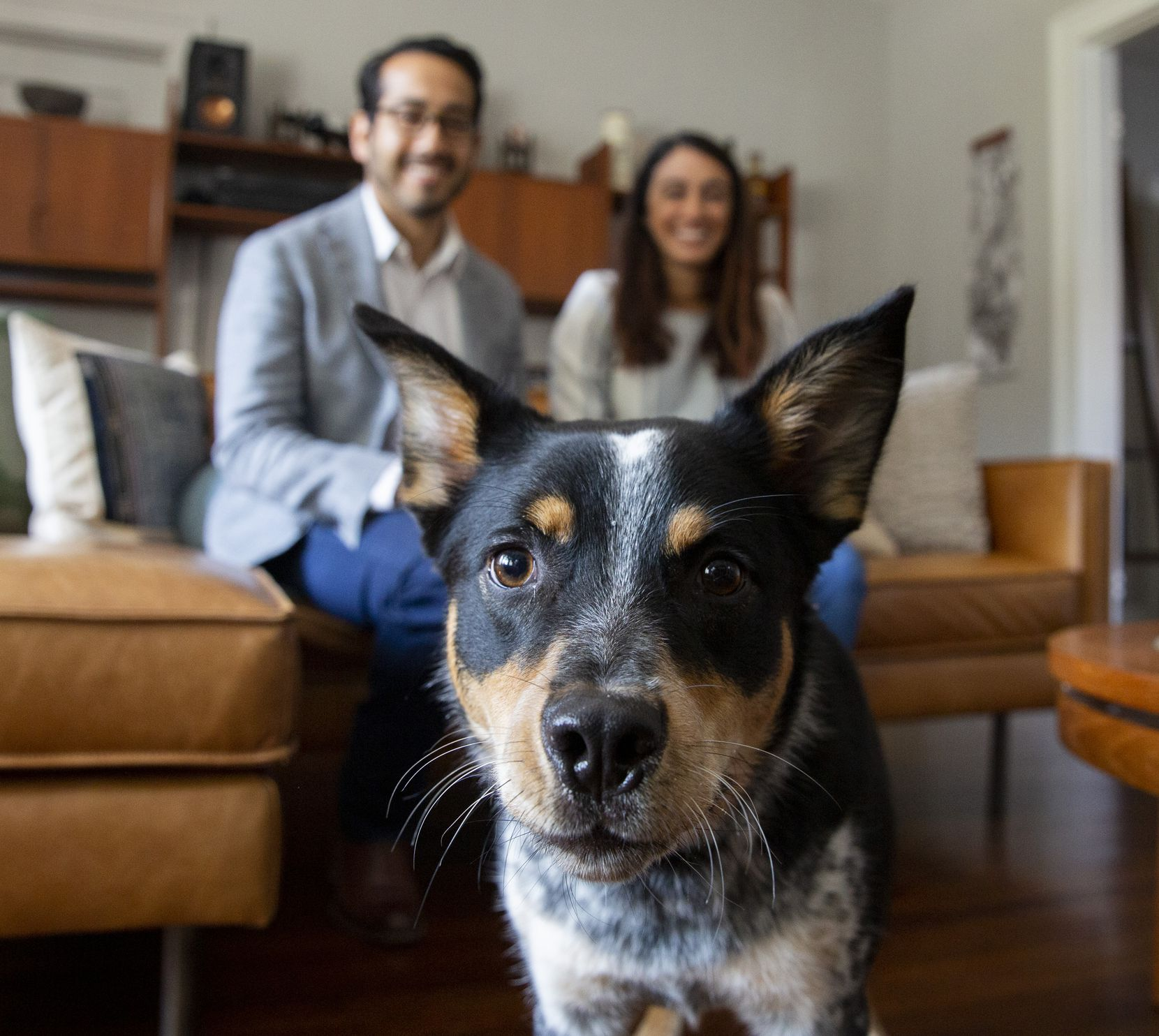 Nic Carmona (left) and Melissa Rodriguez watch their dog Luna get close to the camera on Friday, June 18, 2021, at their home in Dallas.