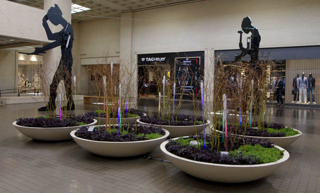 SWA Group display located in the SouthCourt are one of several companies taking part in the NorthPark Center, Spring at the Park Home and Garden Show from May 8-22, 2017.Throughout the month, NorthPark will showcase botanical landscapes including Archiverde, Southern Botanical, Ruibal's Plants of Texas, Dr. Delphinium Designs, Texas Discovery Gardens, and others. Photo taken on Monday, May 8, 2017. (David Woo/The Dallas Morning News)