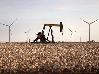 Pump jacks and wind turbines are visible inside of a cotton field near Lamesa, Texas.