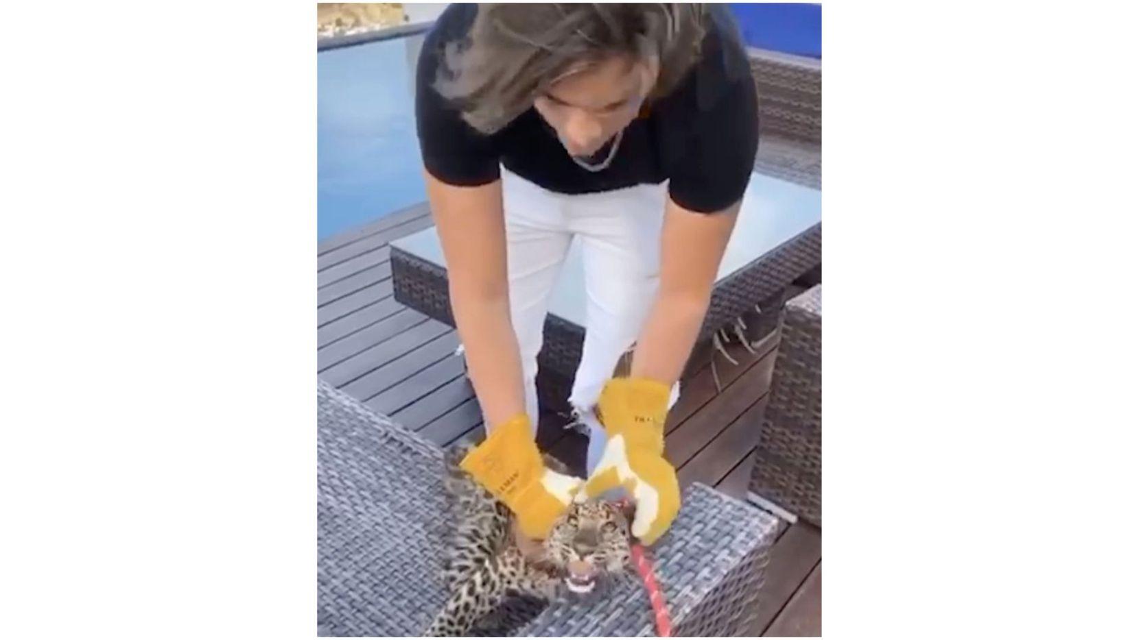 Maltrato animal provocó la salida de un concursante de un reality show en México.