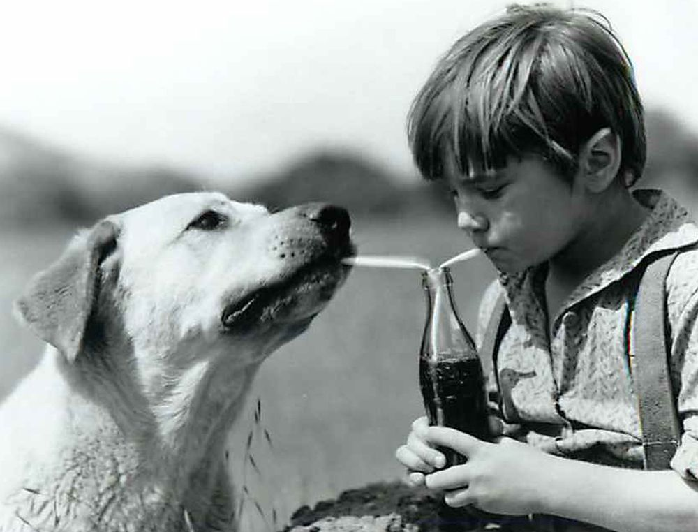 Kevin Corcoran and Old Yeller share a soda on the set of Disney's 'Old Yeller.' Corcoran played Arliss Coates in the 1957 film.