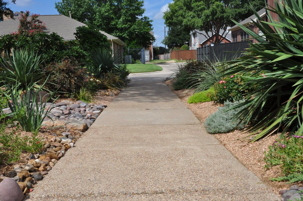 A water-wise landscape design along a driveway