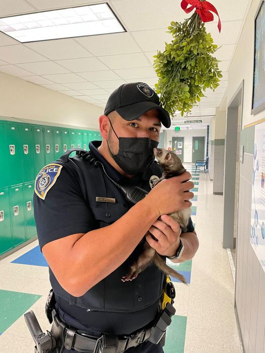 Bonnie is not a drug-sniffing animal, says Officer Brad Uptmore, despite a Southlake DPS video that's garnered 6 million views and counting. She is, however, a pretty good actor.
