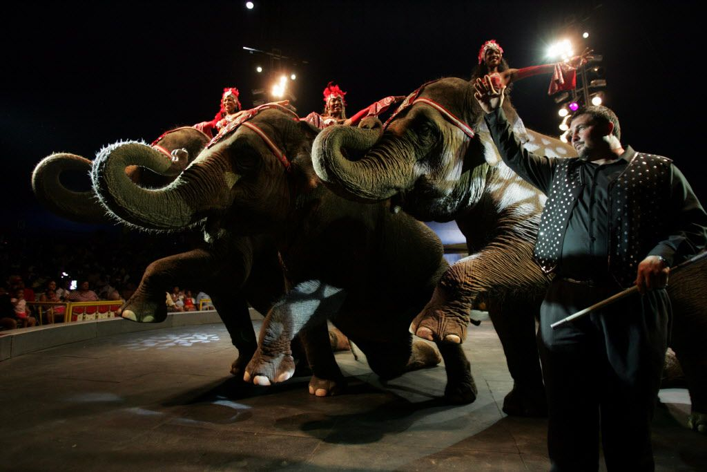 The UniverSoul Circus during a prior visit to the parking lot of Southwest Center Mall (File photo)
