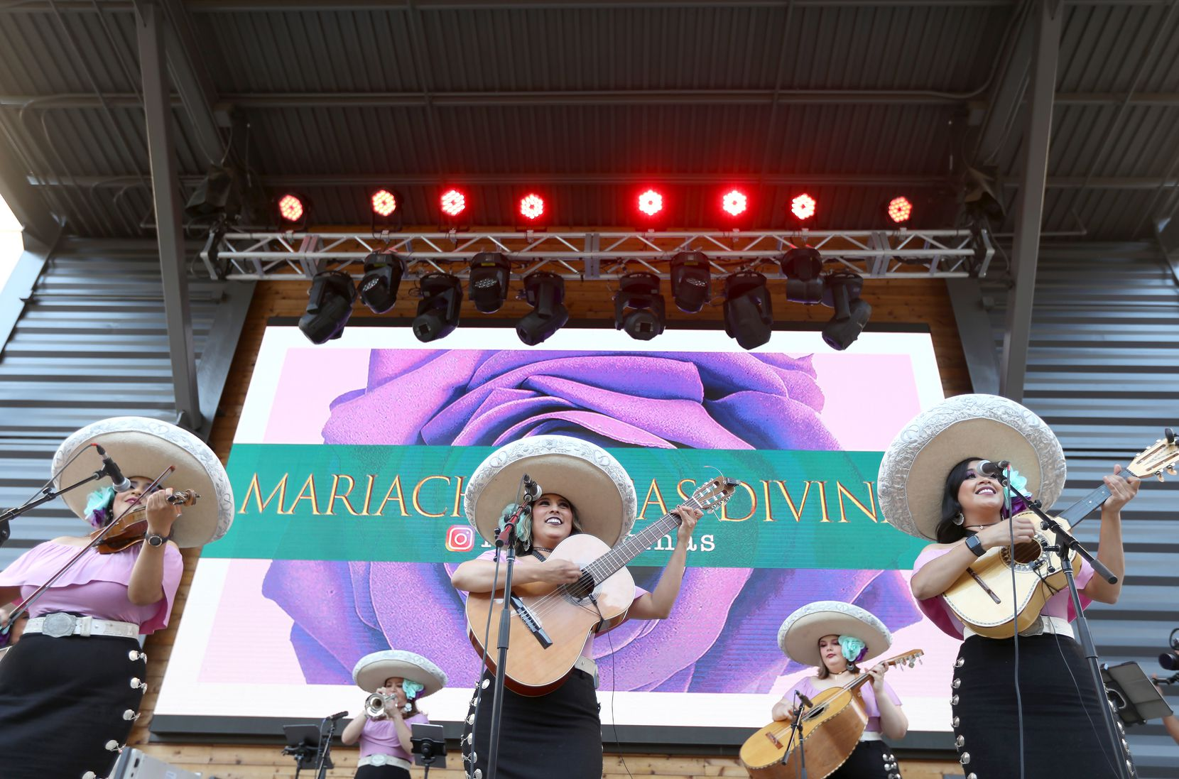 Rosas Divinas performed just five times last year. In a typical year, they're on stage for up to 250 shows.