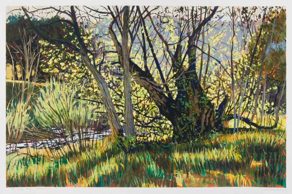 Jane K. Starks, Pot Creek, NM, Summer, gouache on Somerset paper, 26 x 40 inches, courtesy of Valley House Gallery.