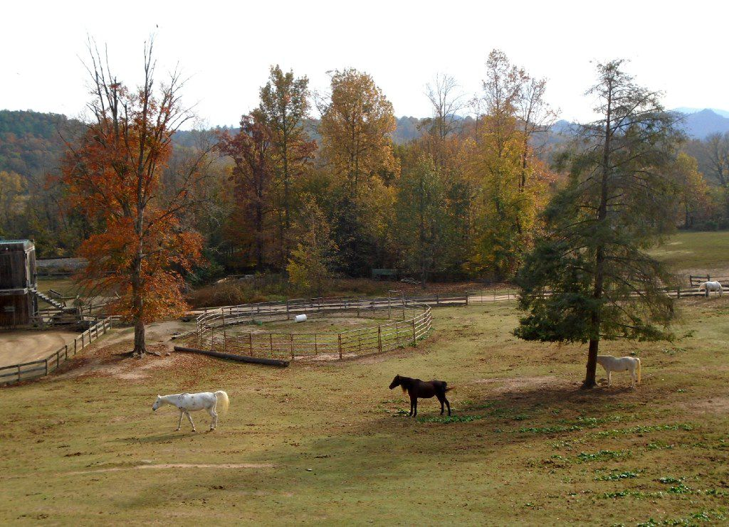French Broad River Outpost Ranch is a breathtaking 346-acre ranch and old West-themed hotel in Del Rio where you can go horseback riding, whitewater rafting and tubing.
