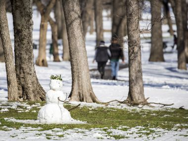 Grass starts to be exposed around a snowman in Tenison Park as warmer afternoon temperatures melt away a record snowfall on Thursday, March 5, 2015, in Dallas. Overnight snow and sleet blanketed the region overnight piling up to 2 to 5 inches across much of the area.  (Smiley N. Pool/The Dallas Morning News)
