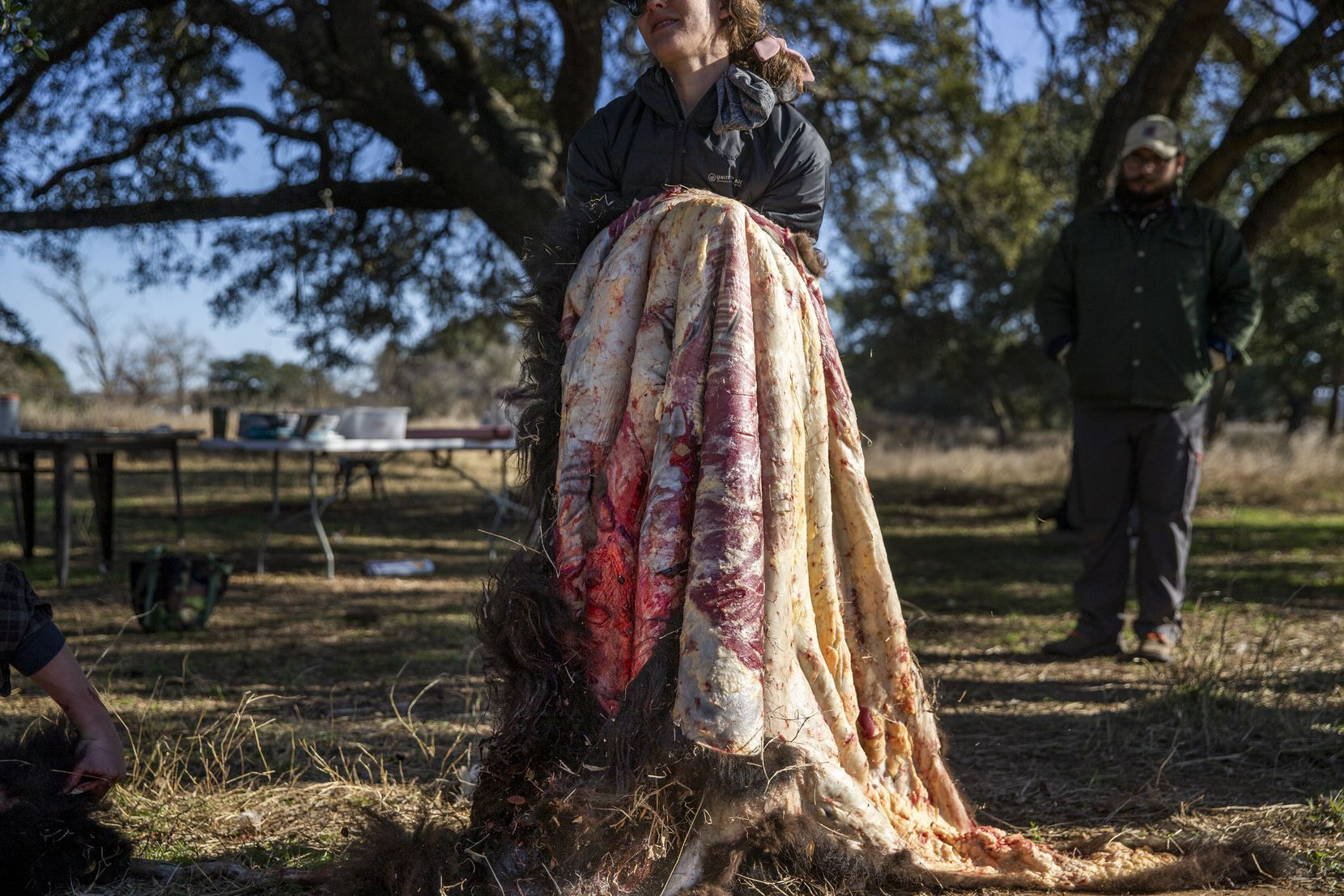 Katie Forrest, co-owner of Roam Ranch, lifts a bison hide for soaking following a daylong bison field harvest event at Roam Ranch in Fredericksburg, Texas, on Sunday, Jan. 19, 2020.