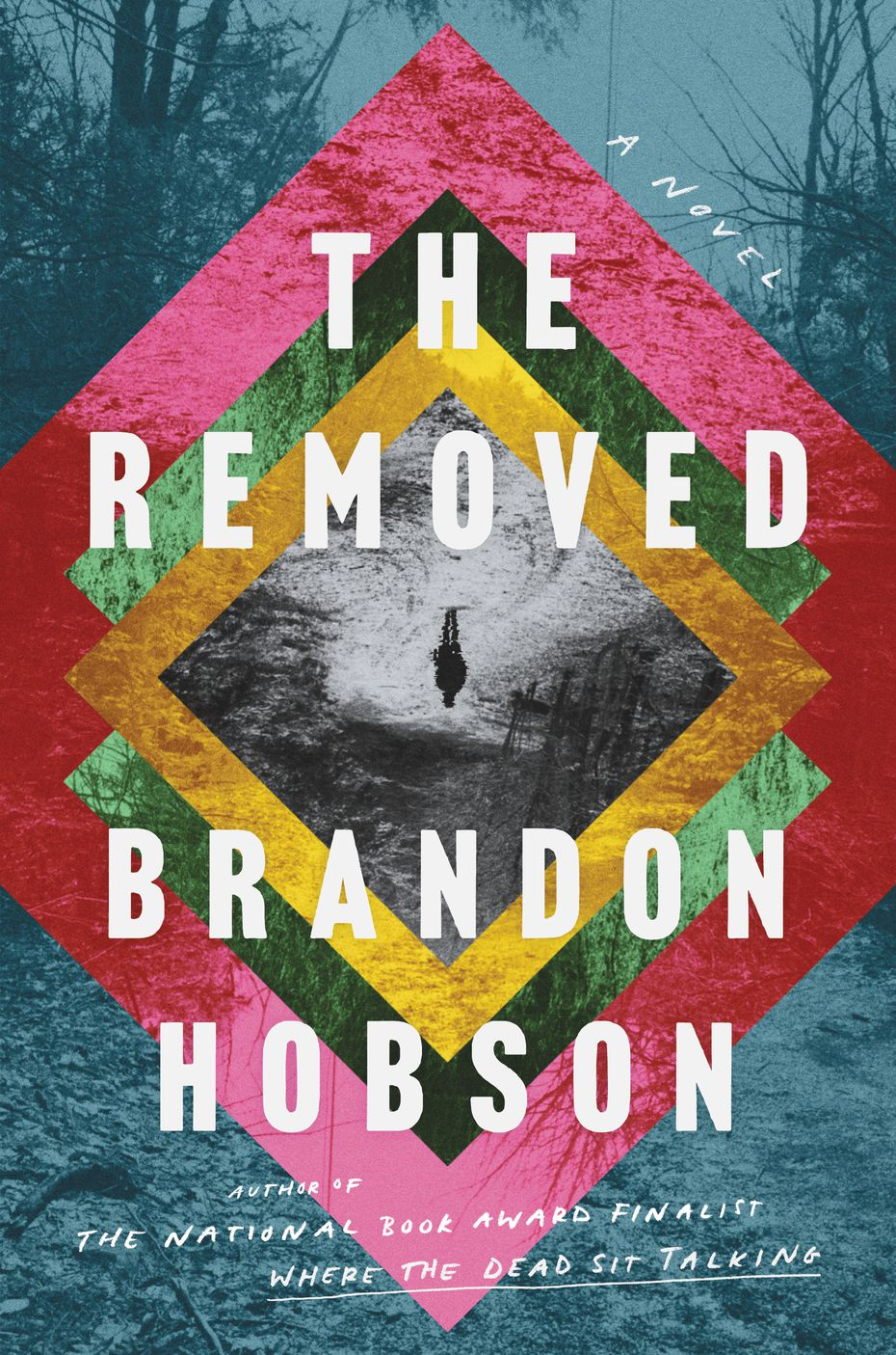 """""""The Removed"""" by Brandon Hobson focuses on a Cherokee family in Oklahoma that lost a son and brother to a police shooting 15 years earlier."""