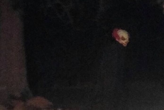 A photo of a creepy clown falsely reported to be stalking backyards in Plano, Texas, last week. A Denton cop this week urged her friends to shoot the next clown caught in public.