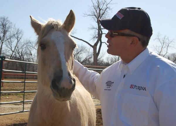 Mustang Mentors for Veterans program came to the Las Colinas Equestrian Center.