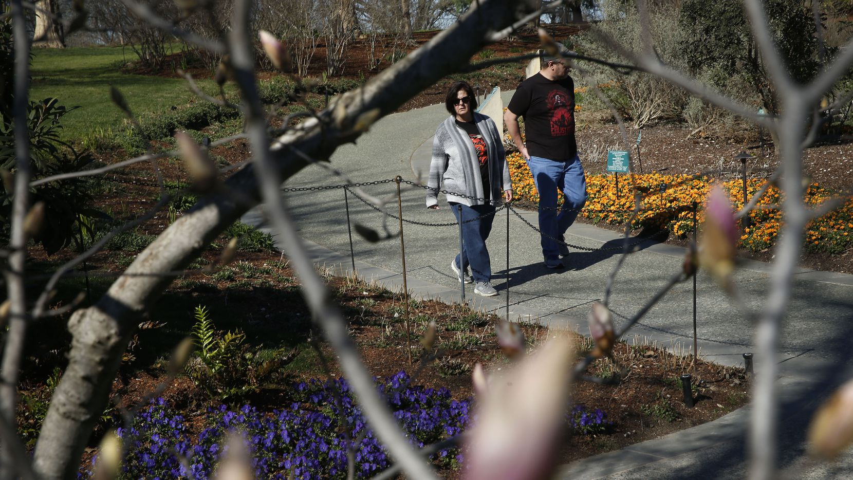 A couple stroll through the Dallas Arboretum and Botanical Garden during a winter visit.