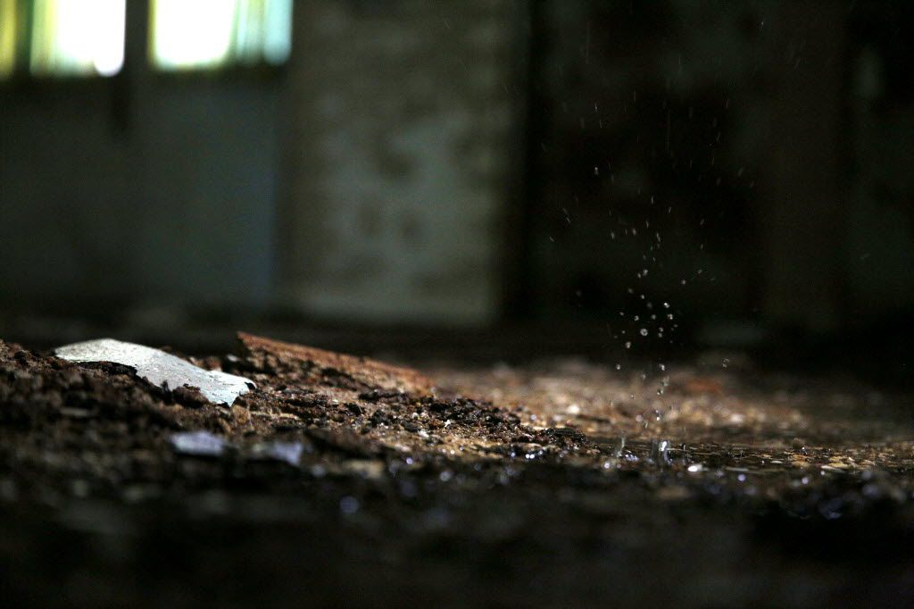 Water drips from the ceiling in the former children's ward and school, unoccupied since 1985, at the Terrell State Hospital in Terrell, Texas on April 21, 2016. (Rose Baca/The Dallas Morning News)