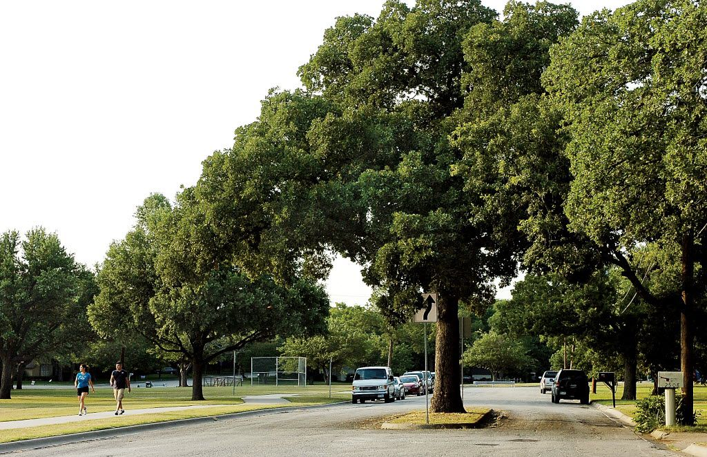 Trees and parks along with meandering roadways and sidewalks define the 'idiot's hill' (Oakland Hills) neighborhood in northeast Denton.
