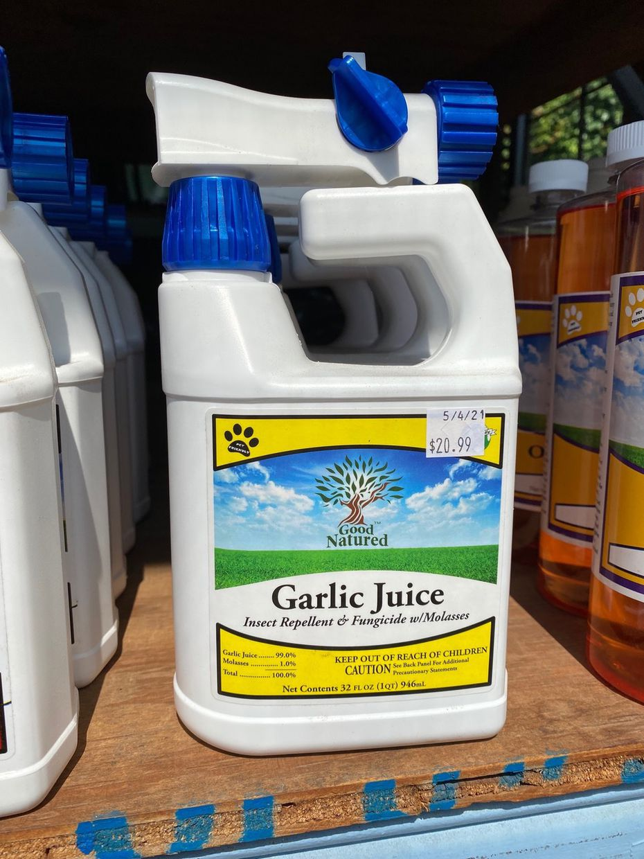 Garlic is available in concentrates and ready-to-use products. Liquid spray mixtures can also be made from a formula on dirtdoctor.com.