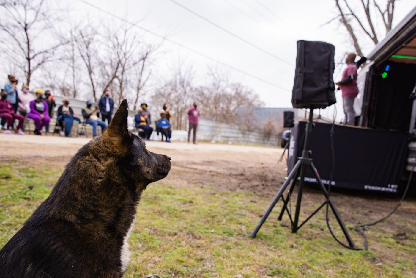 People, including the neighbor's dog, stop to listen to opera singer Lawrence Brownlee perform outside of Marsha Jackson's home in Dallas on Friday, Feb. 26, 2021. Quincy Roberts, the contractor who moved Shingle Mountain, surprised Jackson with the concert. (Juan Figueroa/ The Dallas Morning News)