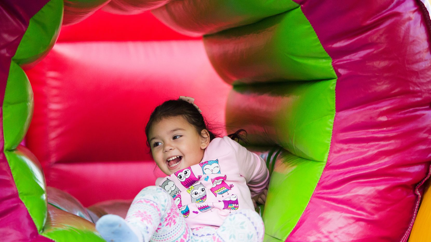 Vogel Alcove's New Year's Day family fun festival will offer a virtual experience on Jan. 1, 2021.