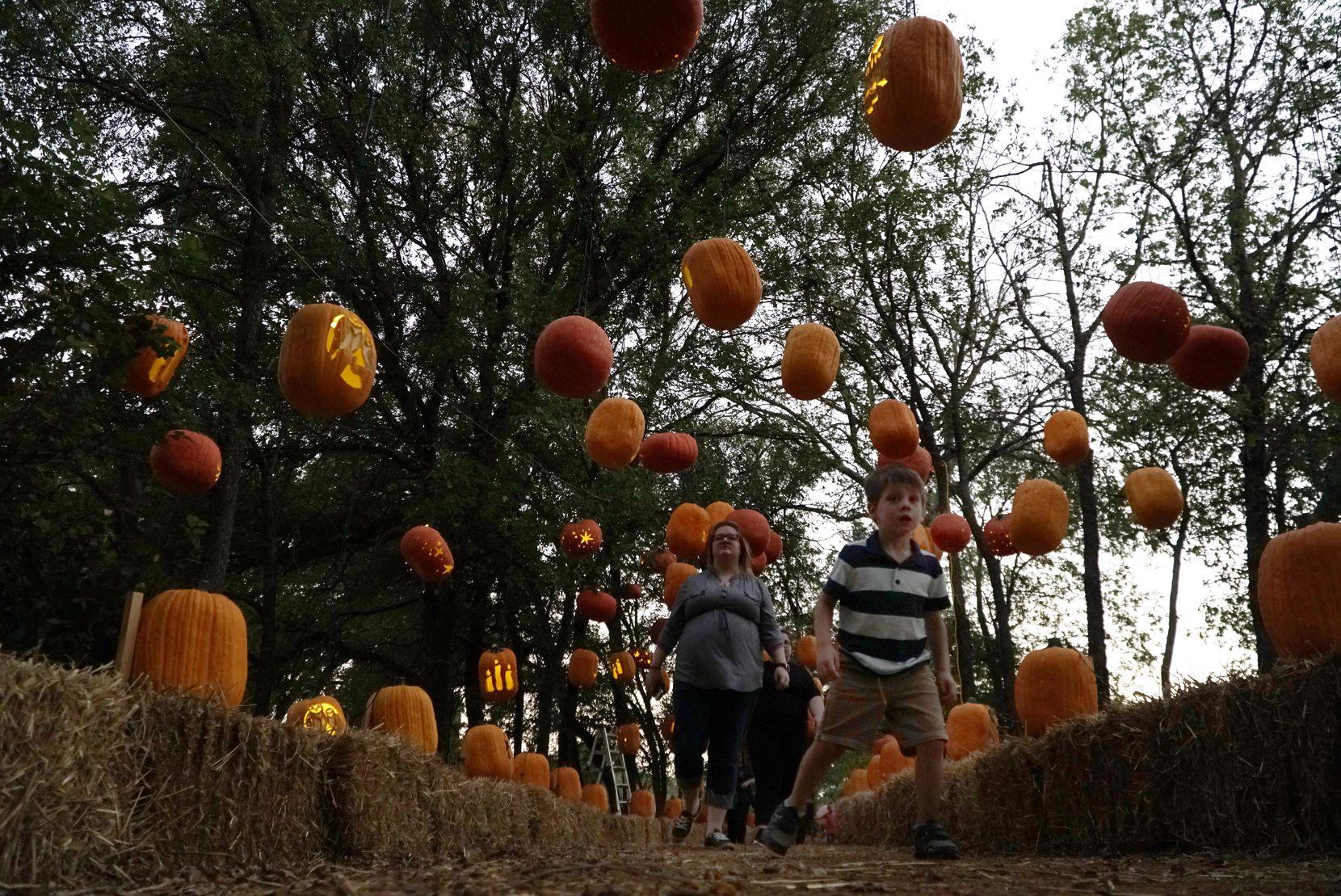 Visitors walk the pathway through Pumpkin Nights.