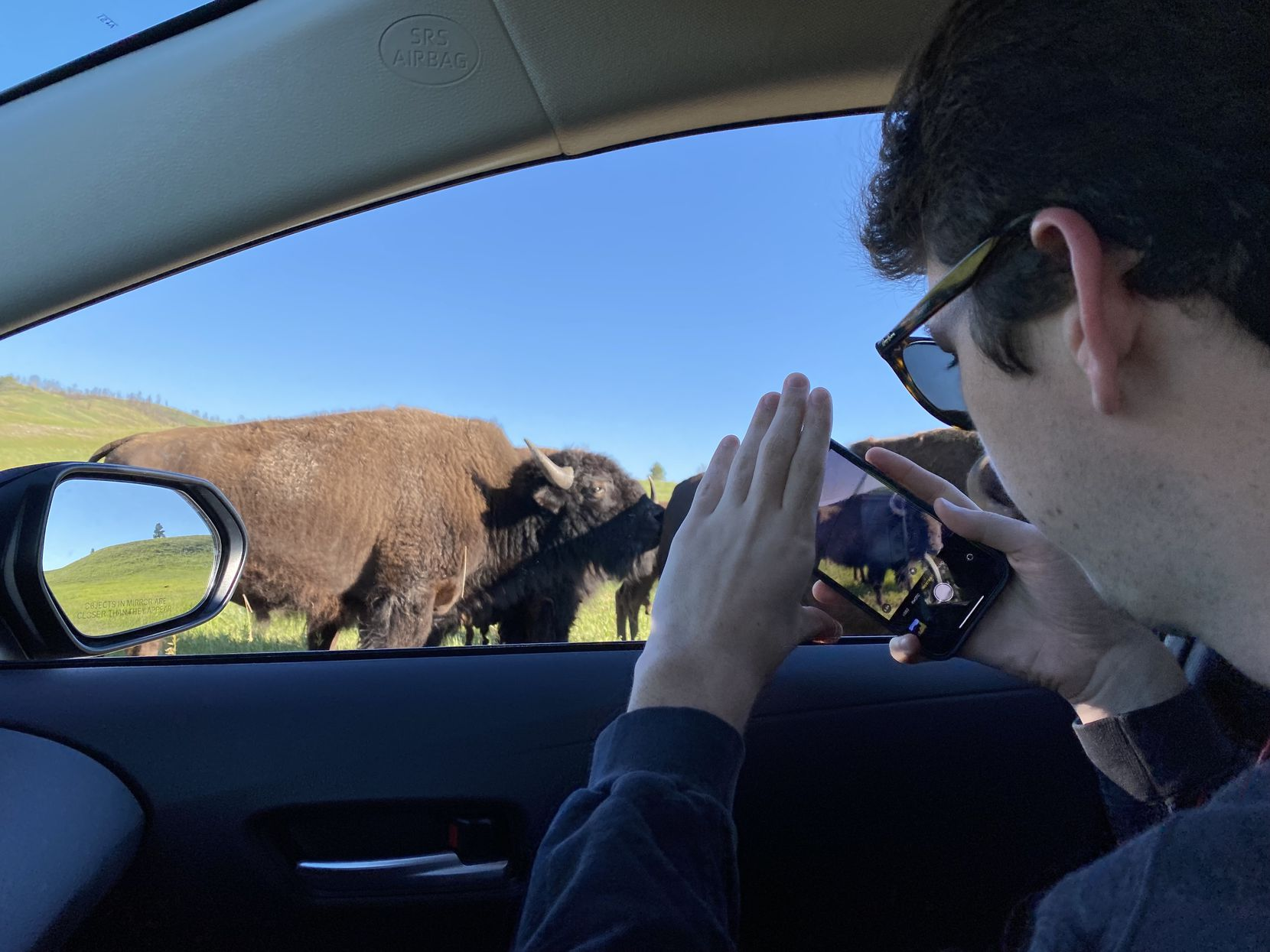Cooper takes a video of buffalo at Custer State Park in South Dakota the week of his 20th birthday.